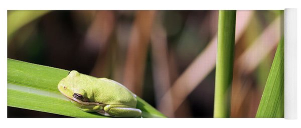 Lone Tree Frog Yoga Mat