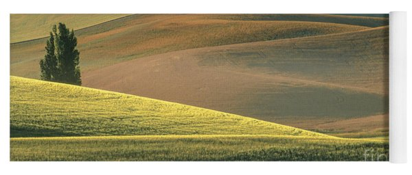 Lone Tree In The Palouse  Yoga Mat