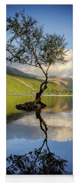 Lone Tree, Llyn Padarn Yoga Mat