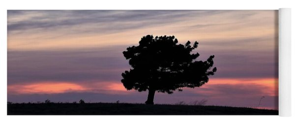 Lonely Little Pine At Sunset Yoga Mat
