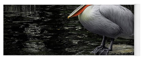 Yoga Mat featuring the photograph Lonely Pelican by Pradeep Raja Prints