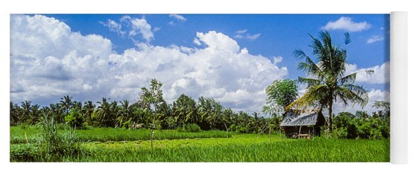 Yoga Mat featuring the photograph Lonely Rice Hut by T Brian Jones