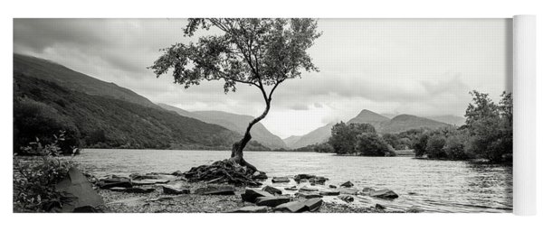 Loney Tree Snowdonia Wales Journey Of Mountains Yoga Mat