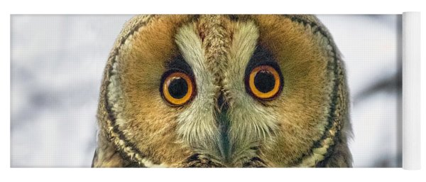 Long Eared Owl 3 Yoga Mat