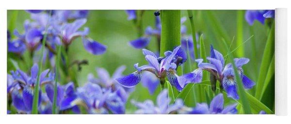 Longwood Garden Flowers Up Close Yoga Mat