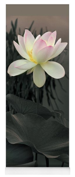Yoga Mat featuring the photograph Lotus Aglow by Jessica Jenney