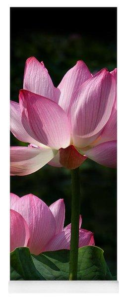 Lotus Beauties--upstaged Dl048 Yoga Mat