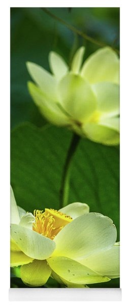 Lotus Lovelies Yoga Mat