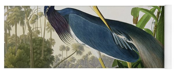 Louisiana Heron Yoga Mat