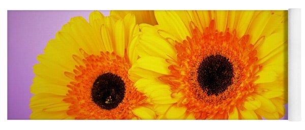 Lovely And Beautiful - Gerbera Daisies Yoga Mat