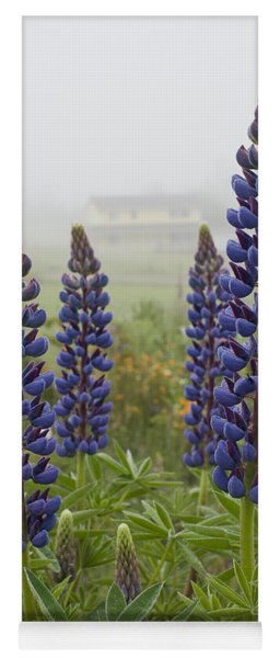 Lupine In The Fog Yoga Mat