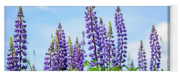 Lupines And Blue Sky Yoga Mat