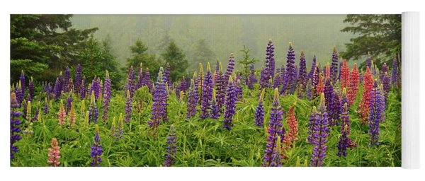 Lupins In The Mist Yoga Mat