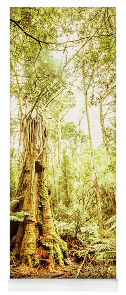 Lush Tasmanian Forestry Yoga Mat