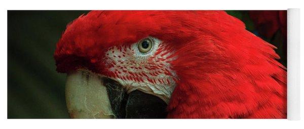 Macaw Portrait Yoga Mat