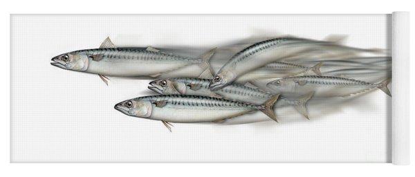 Mackerel School Of Fish - Scomber - Nautical Art - Seafood Art - Marine Art -game Fish Yoga Mat