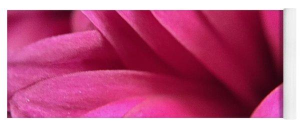 Macro Pink Chrysanthemum Yoga Mat