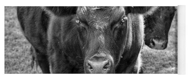 Mad Cow  Yoga Mat