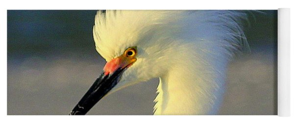 Mad Egret Yoga Mat