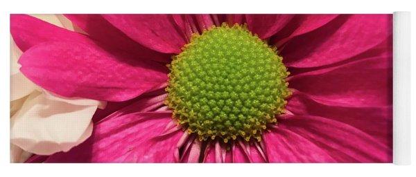 Magenta Chrysanthemum Yoga Mat
