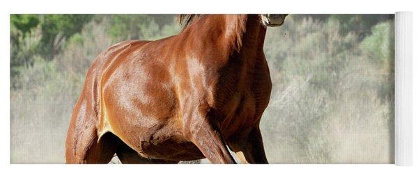 Magnificent Mustang Wildness Yoga Mat
