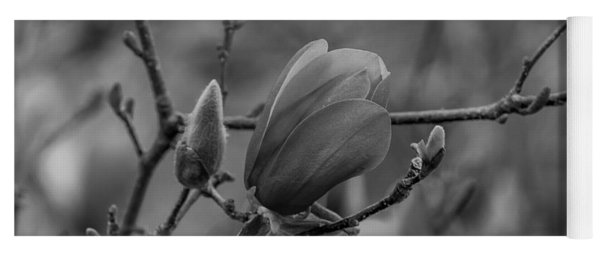 Magnolia Bw Blooms Buds Branches Yoga Mat