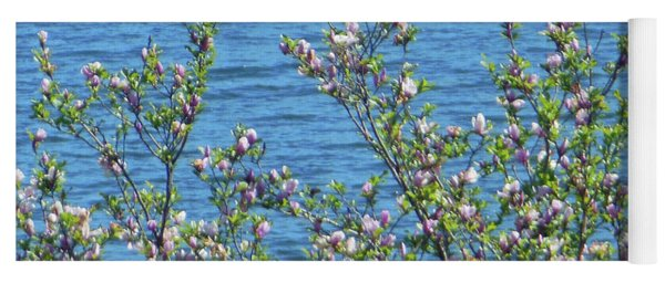 Yoga Mat featuring the photograph Magnolia Flowering Tree Blue Water by Rockin Docks Deluxephotos