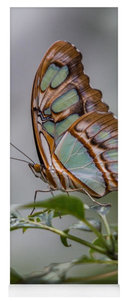 Yoga Mat featuring the photograph Malachite Butterfly Profile by Patti Deters