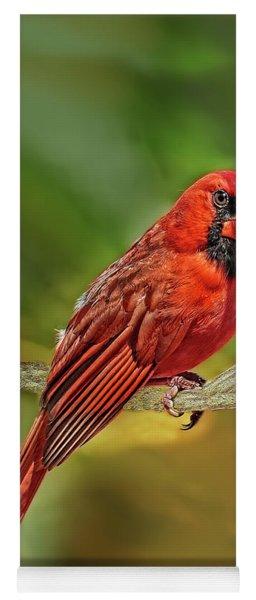 Male Cardinal Headshot  Yoga Mat