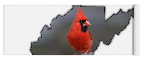 Yoga Mat featuring the photograph Male Cardinal One Of The Most Recognizable Birds by Dan Friend