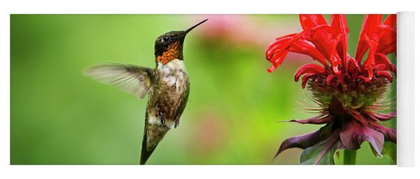 Male Ruby-throated Hummingbird Hovering Near Flowers Yoga Mat