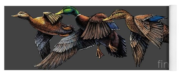 Mallard Ducks In Flight Yoga Mat