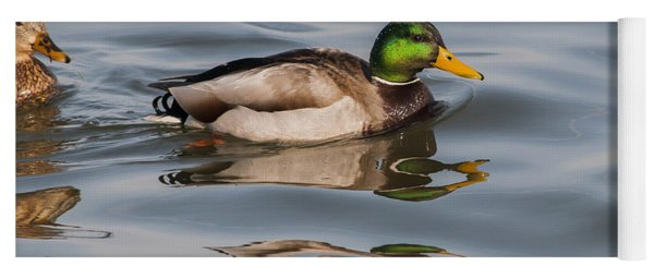 Mallards And Reflection Yoga Mat