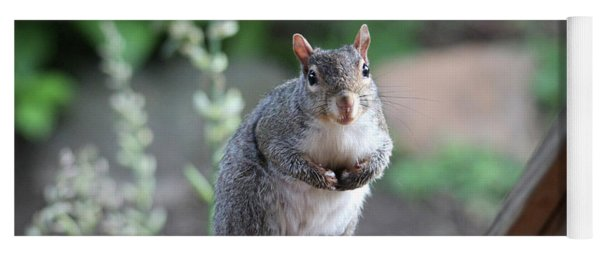 Mama Squirrel Yoga Mat