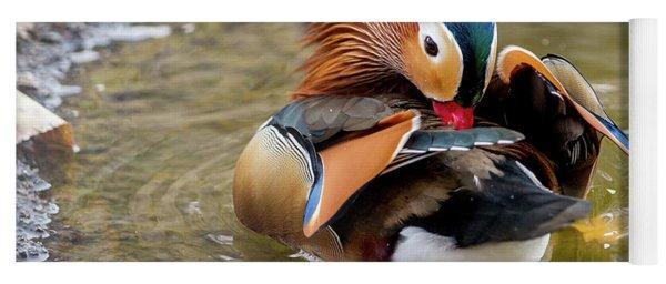 Mandarin Duck Preening Feathers Yoga Mat