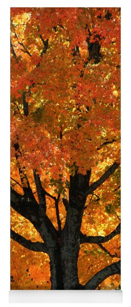Maple Hill Maple In Autumn Yoga Mat