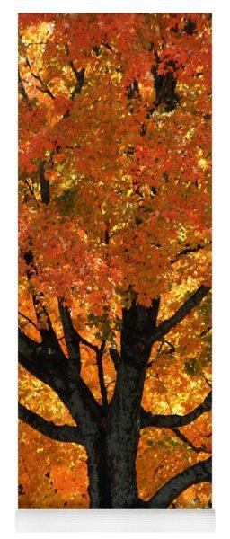 Maple Hill Maple In Autumn Yoga Mat
