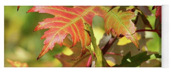 Maple Leaves Yoga Mat