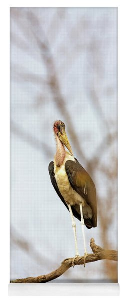 Marabou Stork In South Africa Yoga Mat