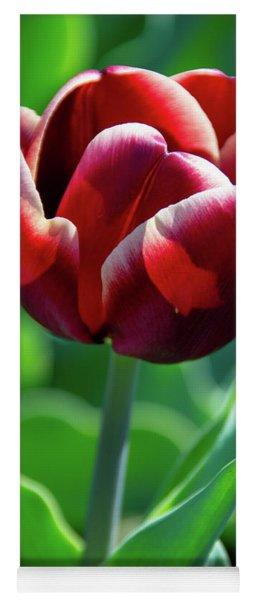 Maroon Tulip Yoga Mat