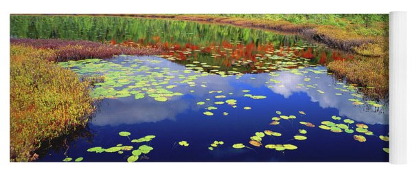 Marsh Pond Yoga Mat