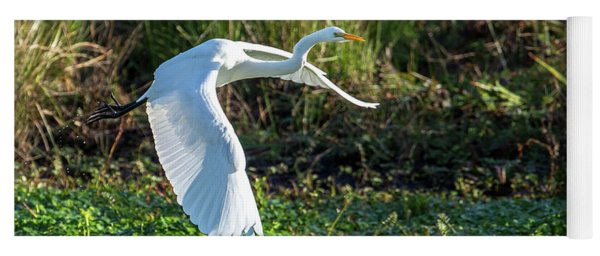 Marshy Flight  Yoga Mat