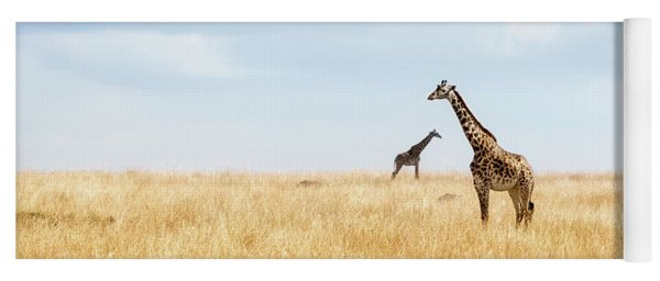 Masai Giraffe In Kenya Plains Yoga Mat