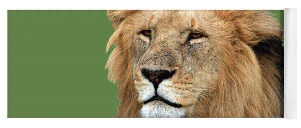 Masai Mara Lion Portrait    Yoga Mat