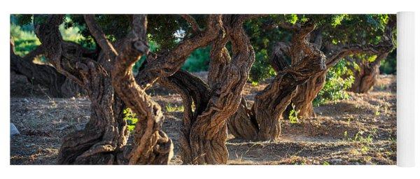 Mastic Tree   Yoga Mat