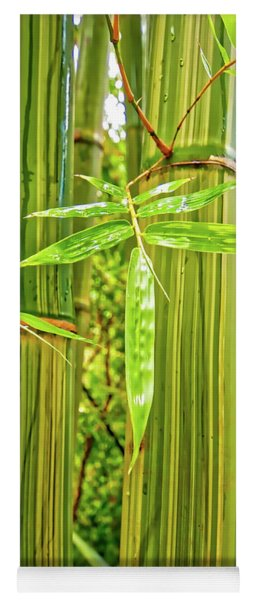 Maui Bamboo  Yoga Mat