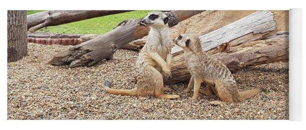 Meerkats  Yoga Mat