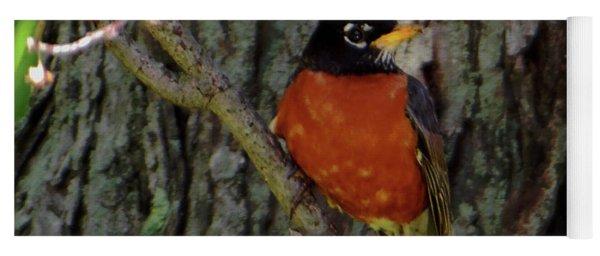 Michigan State Bird Robin Yoga Mat