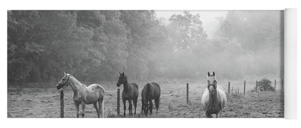 Misty Morning Horses Yoga Mat