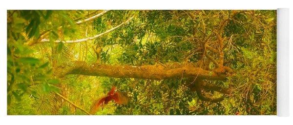 Misty Yellow Hue- Ringed Kingfisher In Flight Yoga Mat